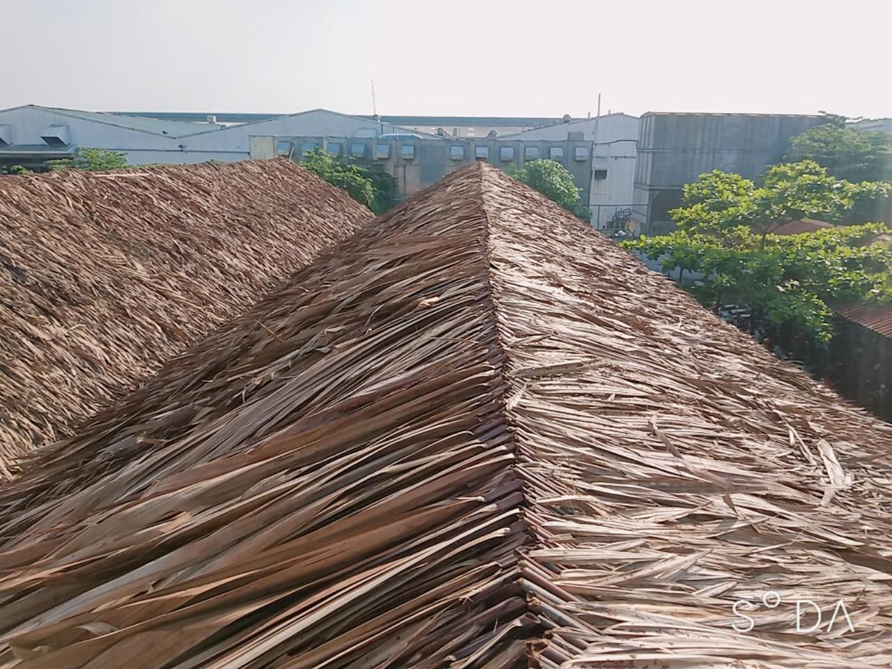 Quy trình xử lý chất liệu -Làm nhà mái láchất liệu chính là lá dừa nước